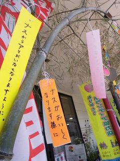 七夕飾り2015.JPG