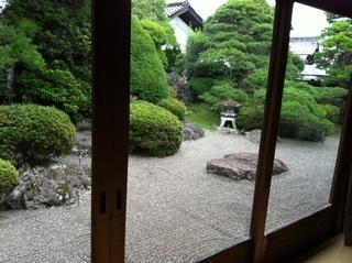 新茶屋1階庭.JPG