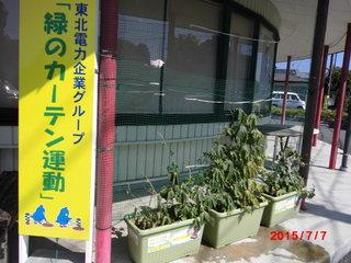 goya20150707-2.JPG